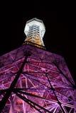 Allerta di Petrin/torre di osservazione, Praga Fotografia Stock