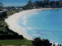 Allerta di Puketeraki della spiaggia di Karitane Immagini Stock