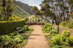Allerta di Wellington Botanic Gardens Herbs And Fotografia Stock Libera da Diritti