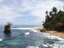 Allerta Manzanillo, Limon, Costa Rica Fotografie Stock Libere da Diritti