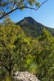 Allerta nell'orlo scenico, Queensland di Spicers Gap Immagini Stock