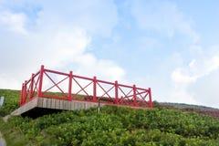 Allerta rossa sulla collina verde Fotografia Stock Libera da Diritti