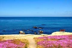 Allerta scenica all'oceano Pacifico in California Immagine Stock Libera da Diritti
