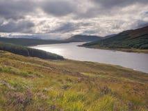 Allerta sopra Loch Ness, Scozia Fotografia Stock Libera da Diritti