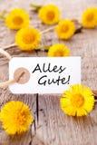 Alles Gute com flores amarelas imagens de stock