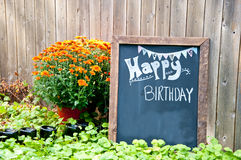 Alles Gute zum Geburtstag Stockfotografie