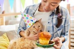 Alles Gute zum Geburtstag zur Katze stockfoto