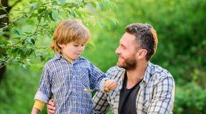 Alles ist mehr Spa? mit Vater Organische Nahrung Gesundes Nahrungkonzept Nahrungsgewohnheiten Kindergriffl?ffel lizenzfreie stockfotografie