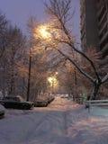 Alles was wit van de sneeuw royalty-vrije stock afbeeldingen