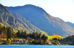Allevamento di pecore di Queenstown Immagine Stock