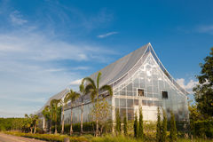 Allevamento vegetale della costruzione Immagine Stock