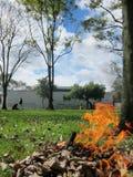 Allevii il fuoco Fotografie Stock
