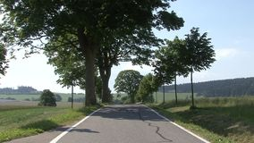 Alley along roads. And sunny sky Czech republic stock video footage