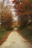 Alley in autumn Stock Photos