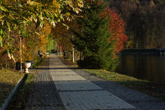 Alley in autumn park. Kiev Royalty Free Stock Photography