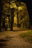 Alley in the autumn park in the late evening. stock photos