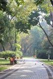 Alley autumn park Stock Image