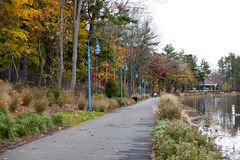 Alley in autumn park. Runs along the pond stock image