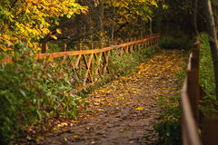 Alley in autumn park via a wooden bridge with railings. Stock Photography