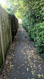 Alley autumn portrait overhang Royalty Free Stock Image