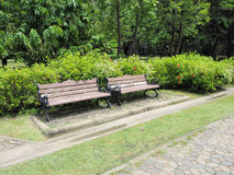 Alley and bench of the garden. Beautiful Spring Park. Green park Stock Photography