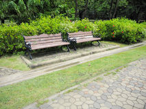 Alley and bench of the garden. Beautiful Spring Park. Green park Royalty Free Stock Photos