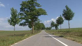 Alley bordering the road. And sunny sky Czech republic stock footage