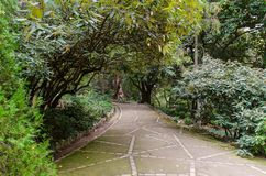 Alley in botanical garden Royalty Free Stock Images