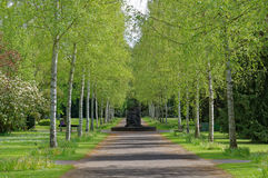 Alley of cementery Royalty Free Stock Photography