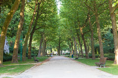 Alley in the city park in Brussels Royalty Free Stock Photos
