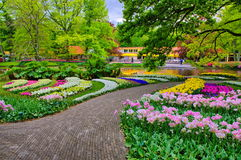 Alley among colorful tulips, Keukenhof Park, Lisse in Holland Royalty Free Stock Images