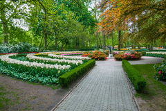 Alley among colorful tulips, Keukenhof Park, Lisse in Holland Royalty Free Stock Image