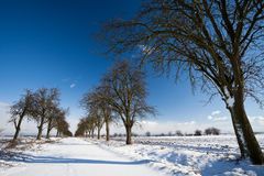 Alley covered with fresh snow Royalty Free Stock Images