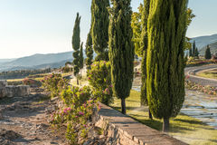 Alley of cypresses in Pamukkale during irrigation Stock Photo