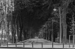 Alley from european city, night winter time, Bucharest Romania Stock Photo