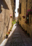 Alley with flower vases Royalty Free Stock Photos