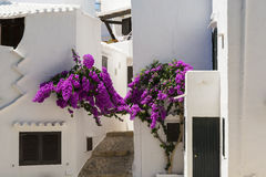 Alley with flowers fishing village, Menorca, Spain Royalty Free Stock Photography