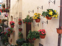 Alley with flowers in old village of Spello, Italy Stock Photos