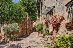 Alley with flowers and plants in Montefalco, Umbria, Italy Royalty Free Stock Images