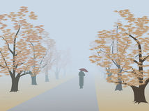 Alley in fog. A lone traveler going on the tree-lined alley in the fog in autumn Royalty Free Stock Photos