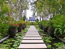 Alley in garden, Koh Samui, Thailand. Alley in tropical garden, Koh Samui, Thailand royalty free stock photos
