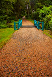Alley in the gardens at Kylemore Abbey Stock Photography