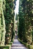 Alley in Giusti Garden in Verona Stock Photo
