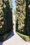 Alley in Giusti Garden in Verona in spring Royalty Free Stock Photography