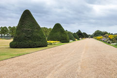 Alley in Hampton Court gardens Royalty Free Stock Images