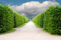 Alley In The Park Royalty Free Stock Photos