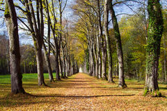 Alley at island herrenchiemsee Royalty Free Stock Image