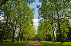 Alley in Kensington Gardens in London. London, United Kingdom - May 14, 2014. Alley in Kensington Gardens in London, with trees and people Royalty Free Stock Image