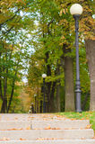 Alley with lampposts in autumn park Stock Photography