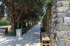 Alley leading to the ruins of a large Byzantine 8th-century Kursi  monastery on the shores of Lake Tiberias. Alley leading to the ruins of a large Byzantine 8th Royalty Free Stock Image